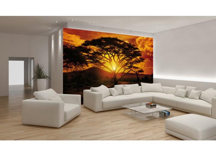 Fotobehang Vlies | Natuur | Oranje, Bruin | 368x254cm (bxh)