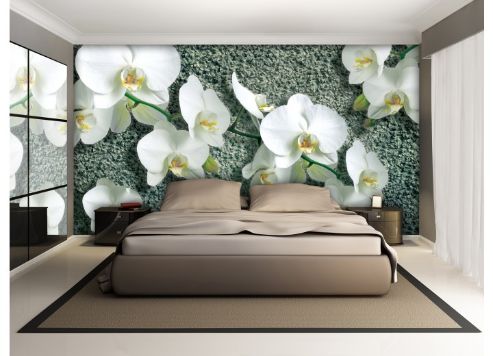 Fotobehang Vlies | Orchideeën, Bloem | Wit | 368x254cm (bxh)