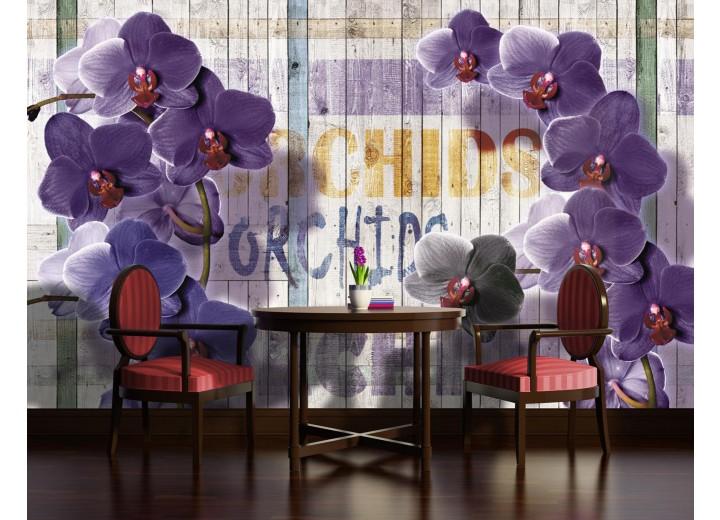 Fotobehang Vlies | Landelijk, Orchidee | Paars | 368x254cm (bxh)