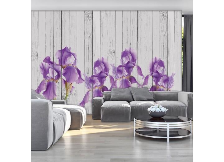 Fotobehang Vlies | Iris, Hout | Paars | 368x254cm (bxh)