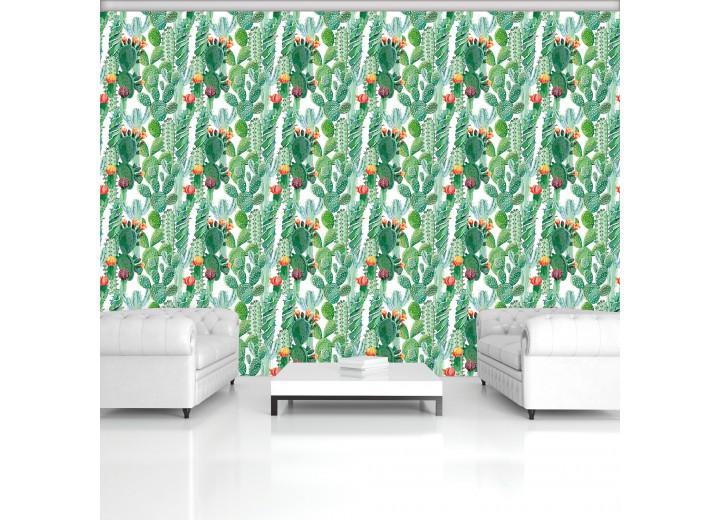 Fotobehang Vlies | Cactus | Groen | 368x254cm (bxh)
