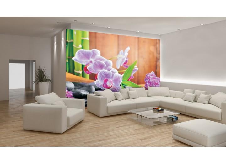 Fotobehang Bloemen, Orchidee | Paars | 416x254