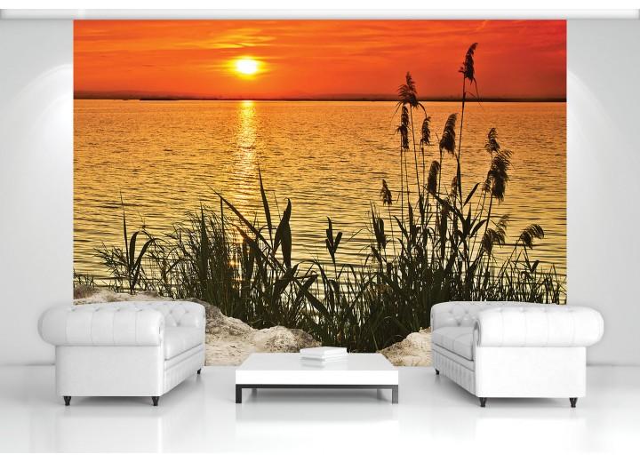 Fotobehang Vlies   Zee   Oranje, Geel   368x254cm (bxh)