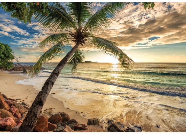 Fotobehang Vlies | Strand, Zee | Groen | 368x254cm (bxh)