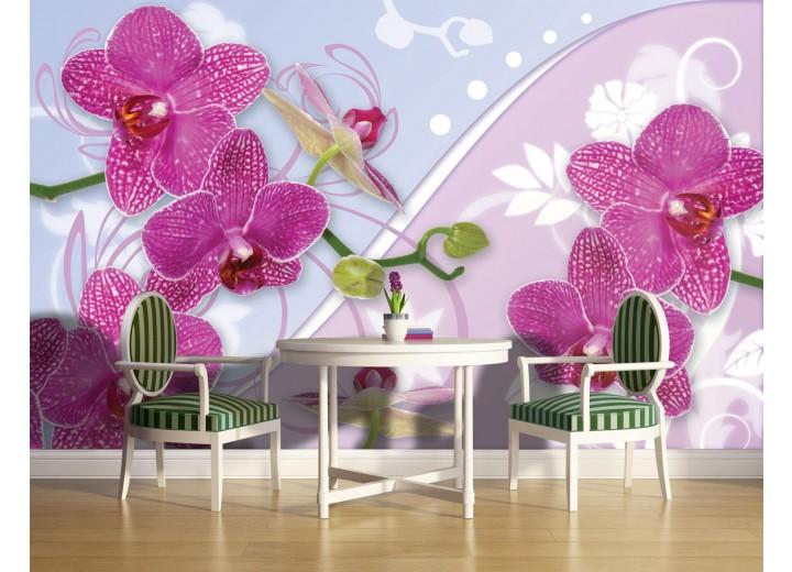 Fotobehang Orchideeën, Bloemen | Roze | 312x219cm