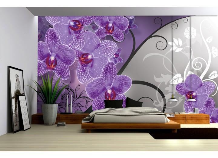 Fotobehang Bloemen, Orchidee | Paars, Grijs | 312x219cm