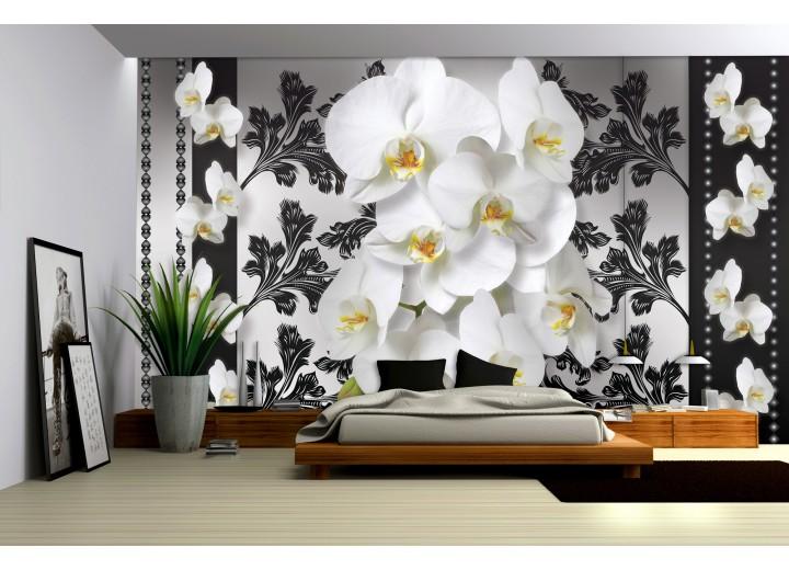 Fotobehang Vlies | Bloemen, Orchideeën | Wit, Grijs | 368x254cm (bxh)