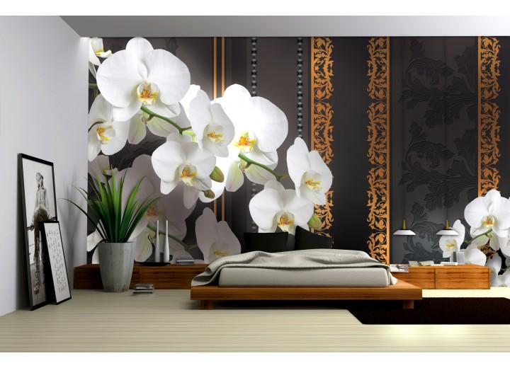 Fotobehang Vlies | Bloemen, Orchideeën | Wit | 368x254cm (bxh)