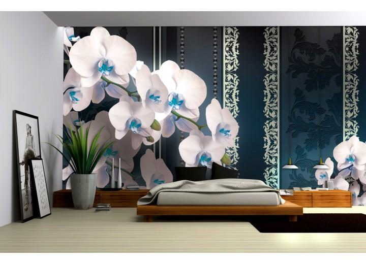Fotobehang Bloemen, Orchideeën | Turquoise | 416x254