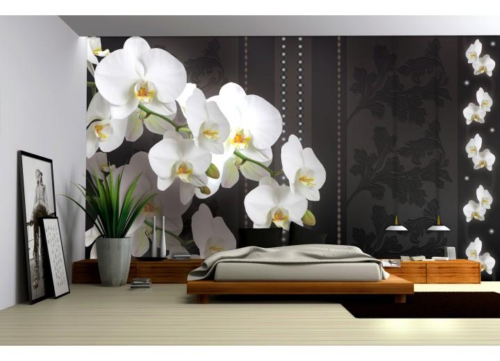 Fotobehang Vlies   Bloemen, Orchideeën   Wit   368x254cm (bxh)