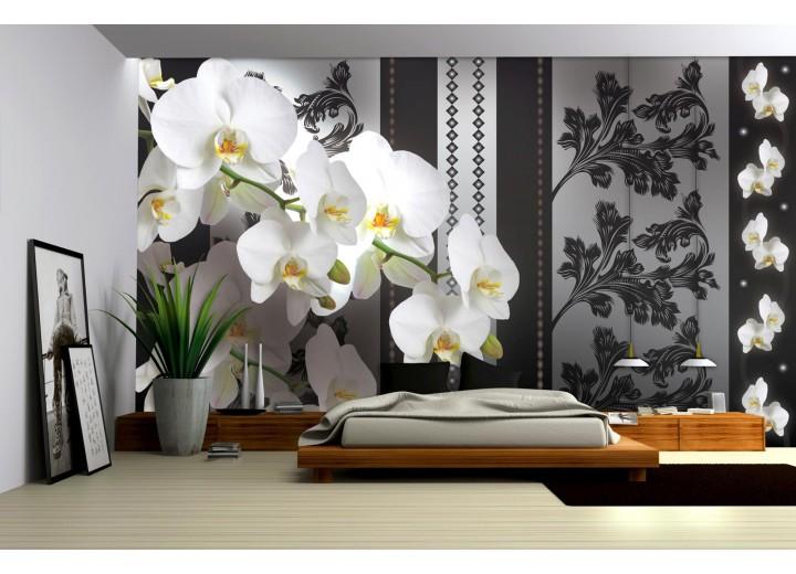 Fotobehang Papier Bloemen, Orchideeën | Grijs | 254x184cm