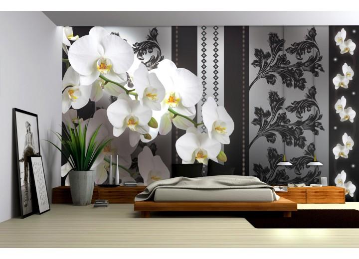 Fotobehang Vlies   Bloemen, Orchideeën   Grijs   368x254cm (bxh)