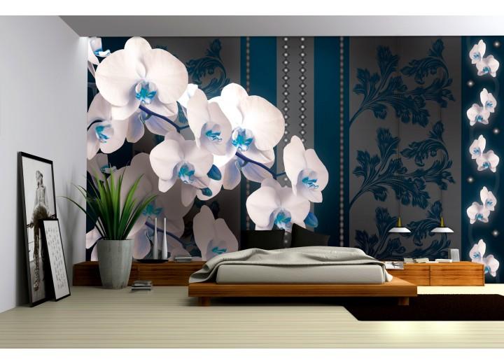 Fotobehang Bloemen, Orchideeën | Blauw | 104x70,5cm