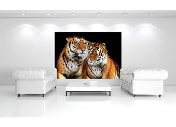 Fotobehang Vlies   Wilde dieren   Zwart   368x254cm (bxh)