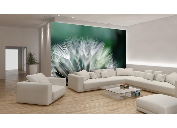 Fotobehang Bloemen | Groen, Wit | 152,5x104cm