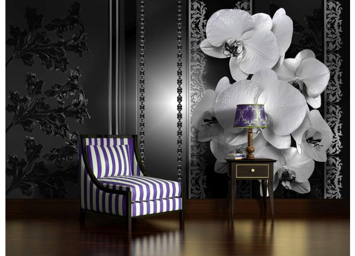 Fotobehang Bloemen, Orchidee | Zwart | 208x146cm