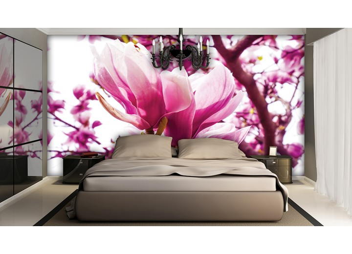 Fotobehang Bloemen, Magnolia | Roze | 208x146cm