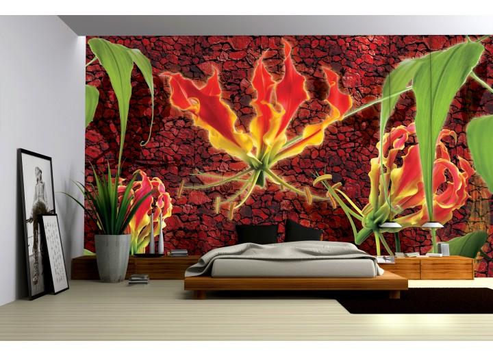 Fotobehang Vlies   Bloemen   Rood, Oranje   368x254cm (bxh)