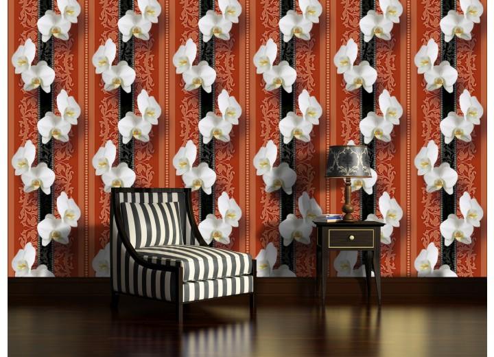 Fotobehang Bloemen, Orchidee | Wit | 208x146cm