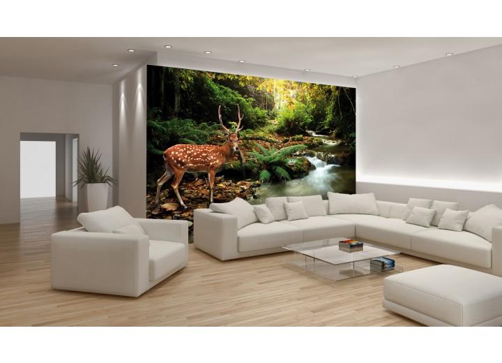 Fotobehang Bos, Natuur | Bruin, Groen | 208x146cm