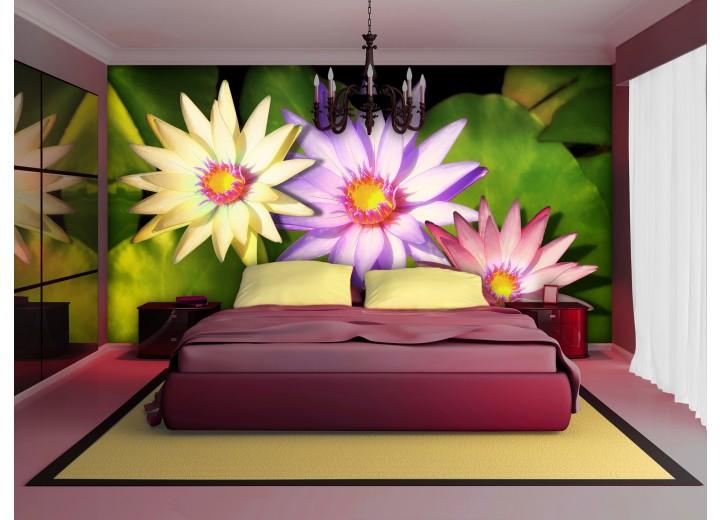 Fotobehang Vlies | Bloemen | Groen, Paars | 368x254cm (bxh)