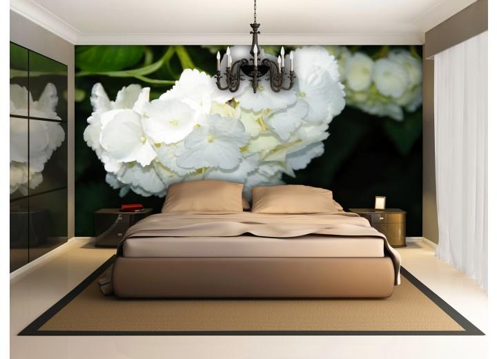 Fotobehang Papier Bloemen | Zwart, Wit | 254x184cm