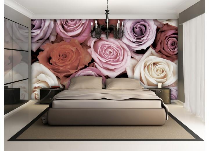 Fotobehang Papier Rozen, Bloemen | Roze | 254x184cm