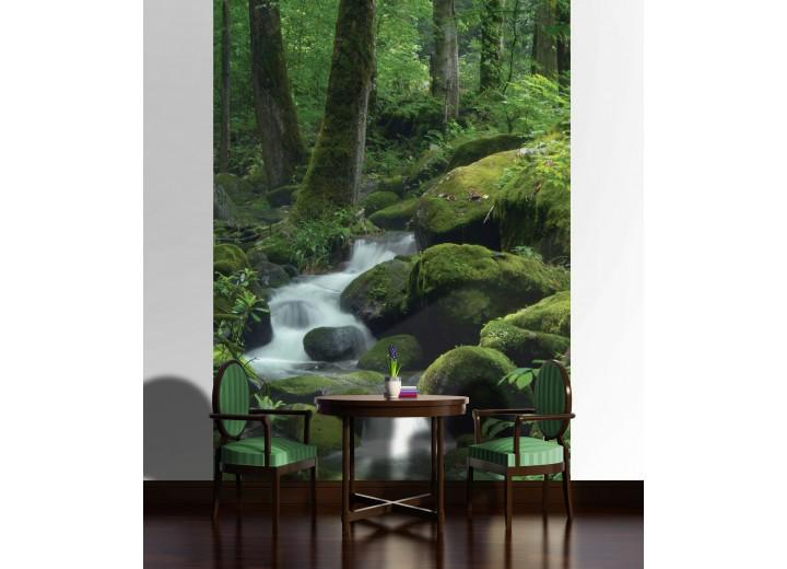 Fotobehang Papier Natuur, Bos | Groen | 184x254cm