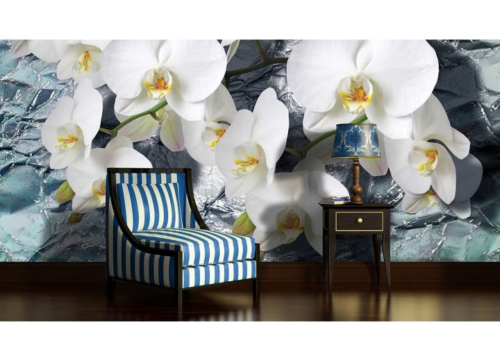 Fotobehang Vlies   Orchidee, Bloemen   Wit   368x254cm (bxh)