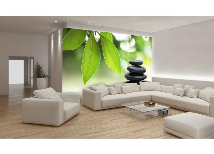 Fotobehang Papier Stenen, Natuur | Groen | 254x184cm