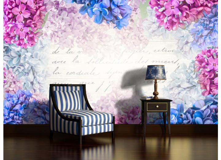 Fotobehang Bloemen | Roze, Blauw | 312x219cm
