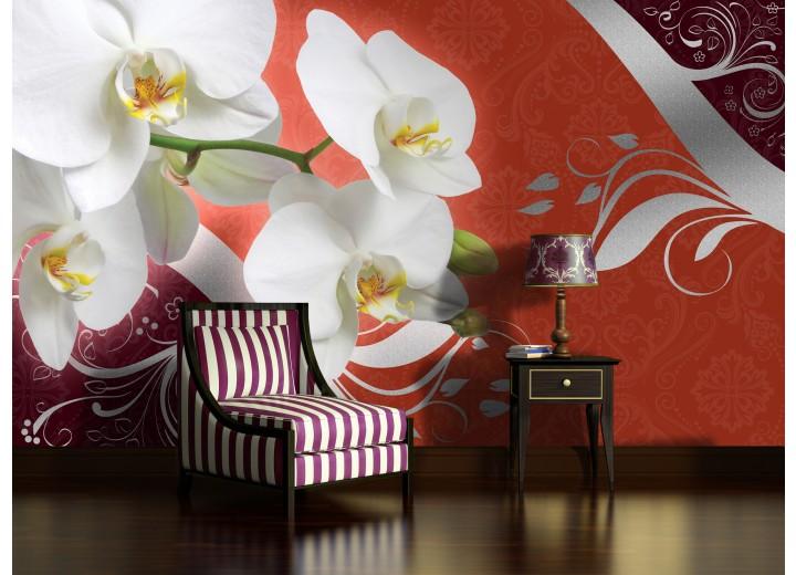 Fotobehang Vlies | Orchidee, Bloem | Wit | 368x254cm (bxh)