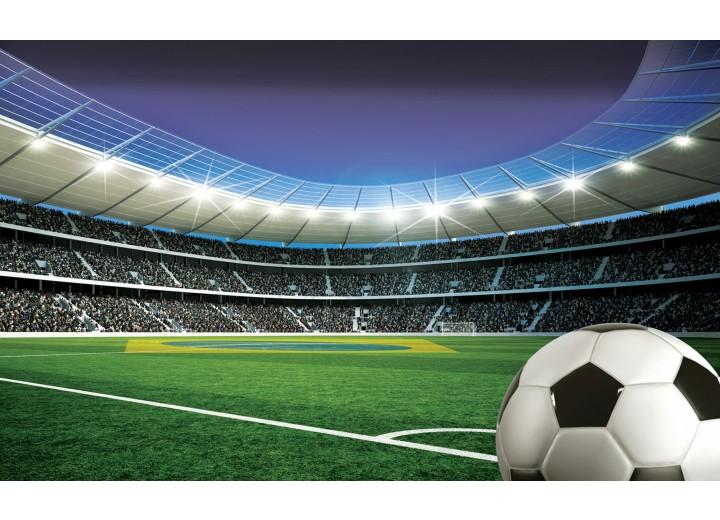 Fotobehang Papier Voetbalstadion | Groen | 254x184cm