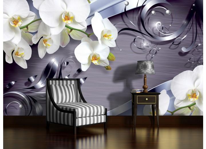 Fotobehang Bloemen, Orchidee | Wit | 312x219cm