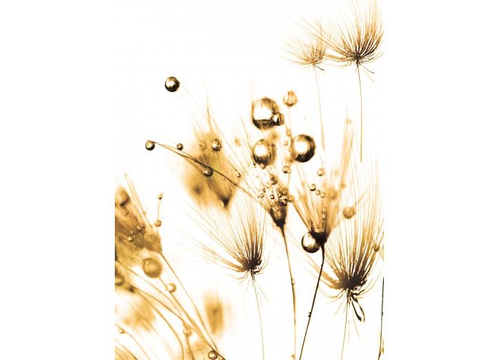 Fotobehang Papier Bloemen | Wit, Goud | 184x254cm
