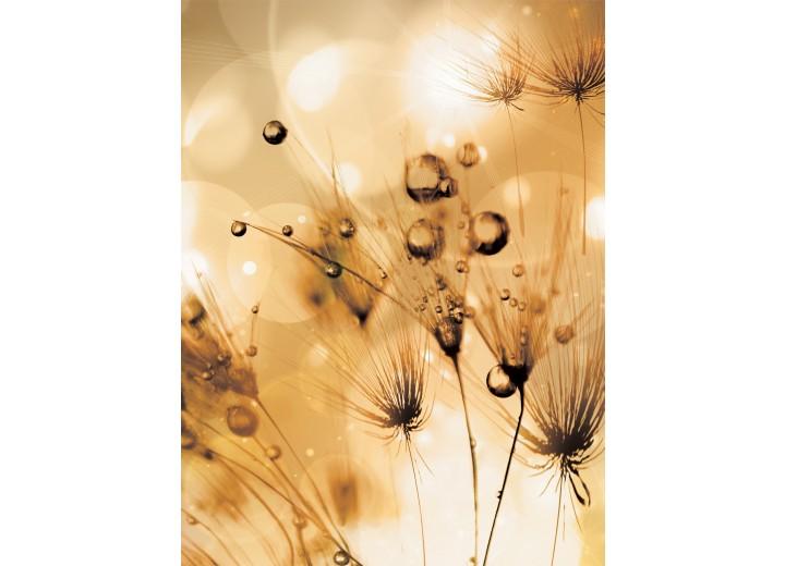 Fotobehang Papier Bloemen | Bruin | 184x254cm
