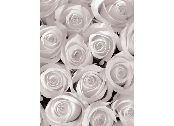 Fotobehang Papier Bloemen, Rozen | Grijs | 184x254cm