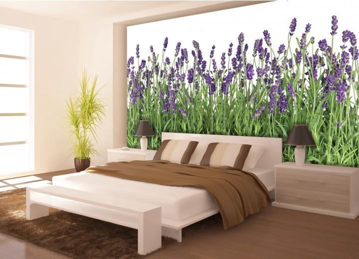 Fotobehang Vlies | Natuur, Lavendel | Groen | 368x254cm (bxh)