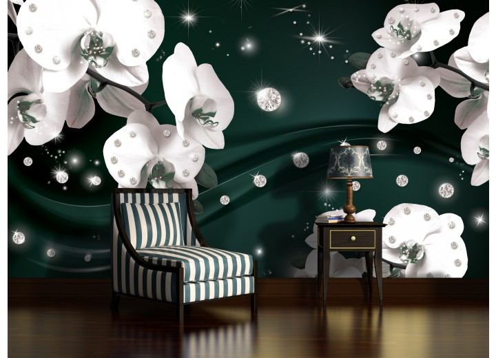 Fotobehang Vlies | Orchideeën, Bloemen | Wit | 368x254cm (bxh)