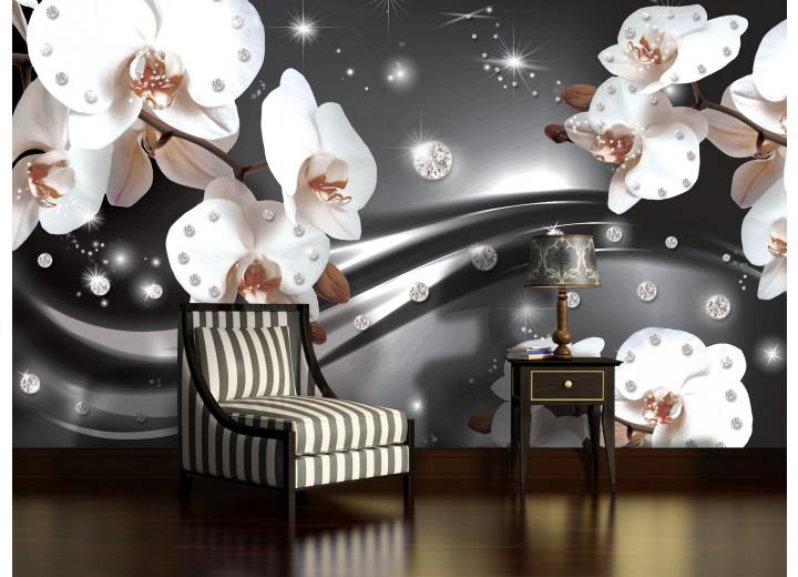 Fotobehang Papier Orchideeën, Bloemen | Zilver | 368x254cm