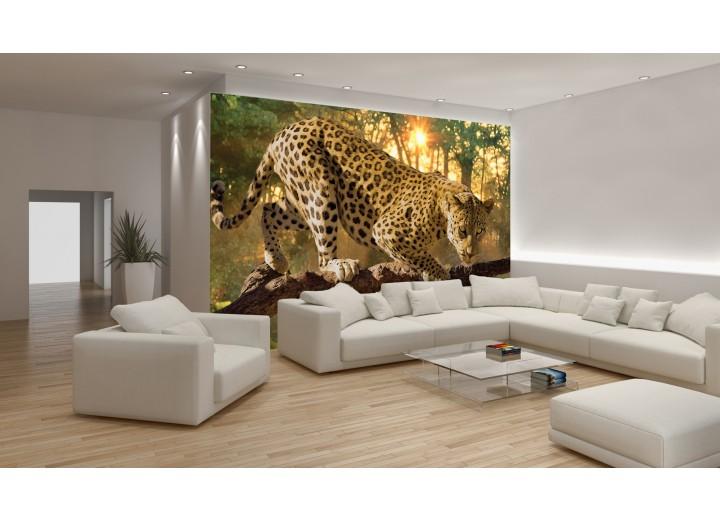 Fotobehang Jaguar, Dieren | Geel | 152,5x104cm