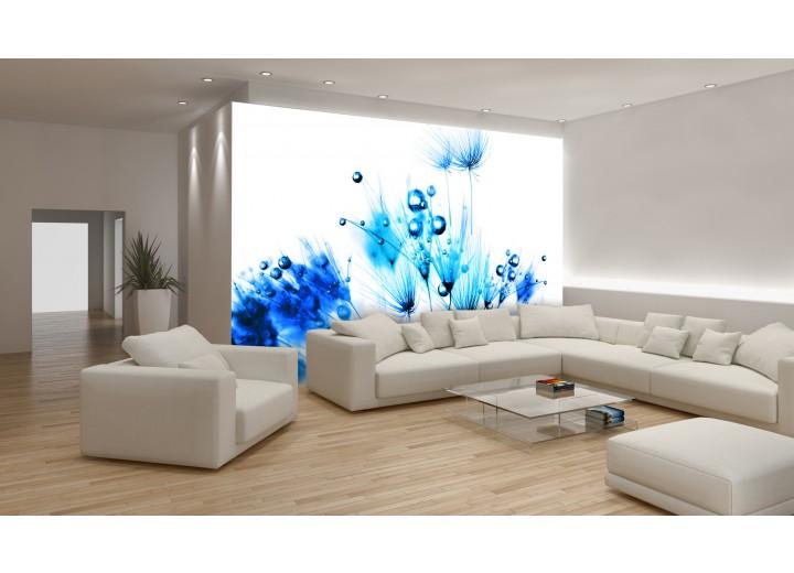 Fotobehang Bloemen | Wit, Blauw | 104x70,5cm