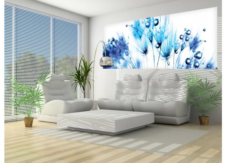 Fotobehang Bloemen   Wit, Blauw   250x104cm