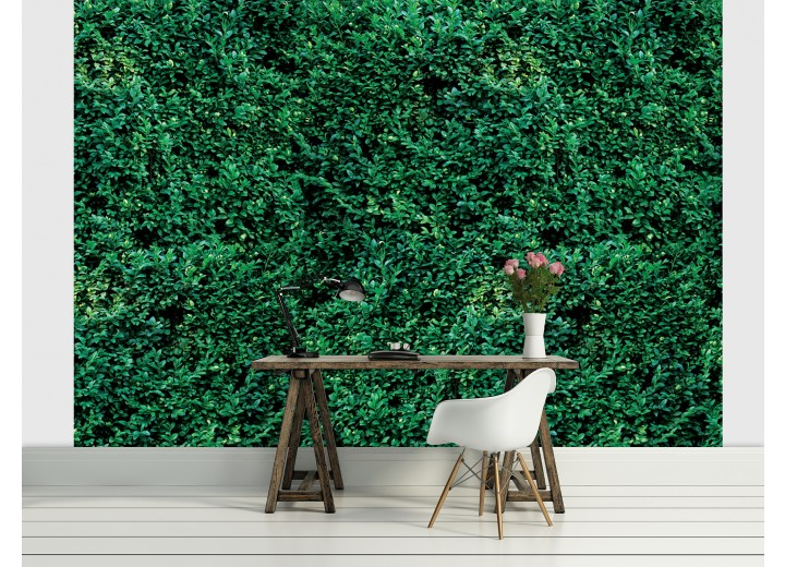 Fotobehang Natuur | Groen | 104x70,5cm