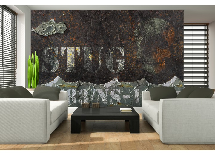 Fotobehang Muur, Industrieel | Bruin | 416x254