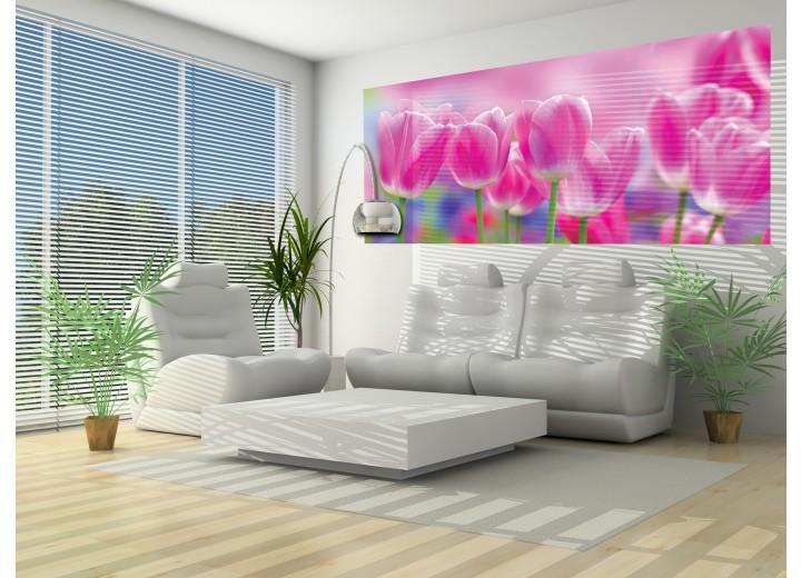 Fotobehang Bloemen, Tulpen | Roze | 250x104cm