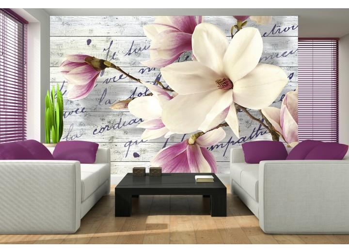 Fotobehang Bloemen, Magnolia | Crème | 416x254