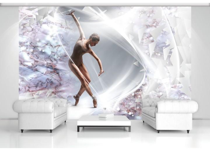 Fotobehang Papier Dansen, ballet | Zilver | 368x254cm