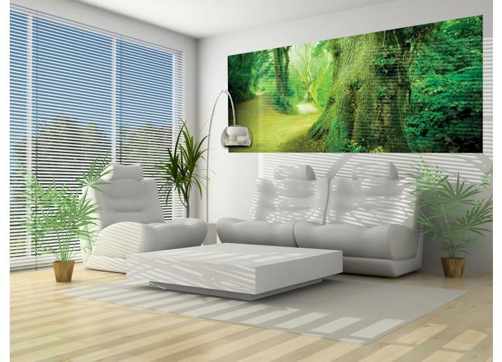 Fotobehang Boom | Groen | 250x104cm