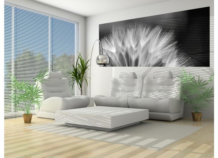 Fotobehang Bloemen | Zwart, Wit | 250x104cm